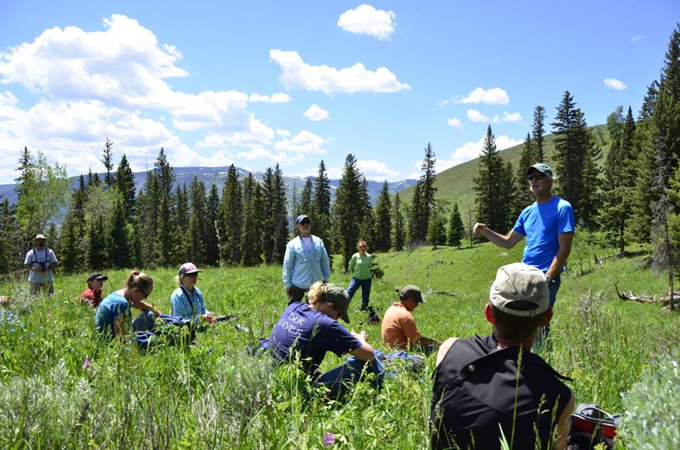 New course! Adaptive Ecological monitoring
