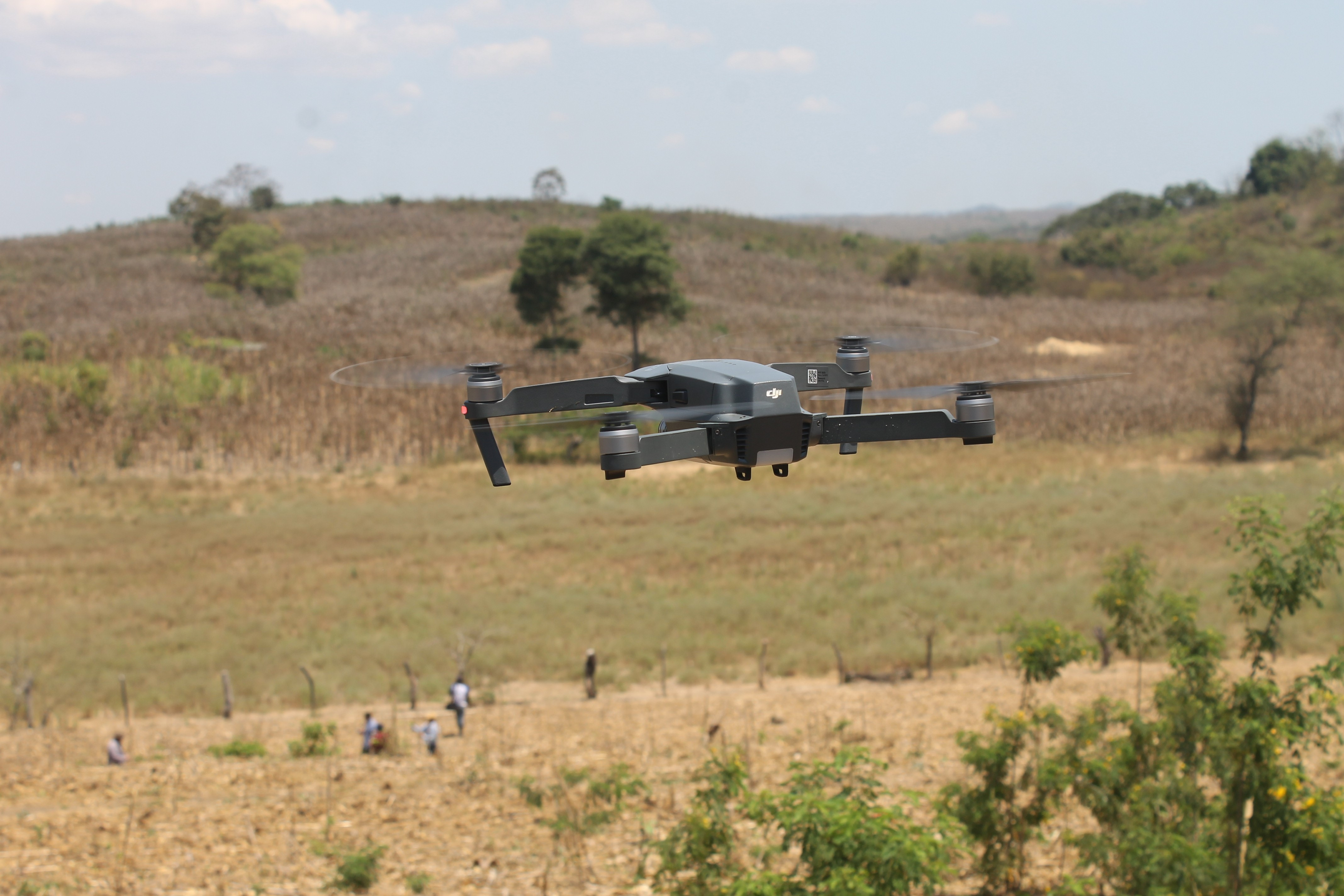 Blog report: Using Drones to Study Livestock and Trees in